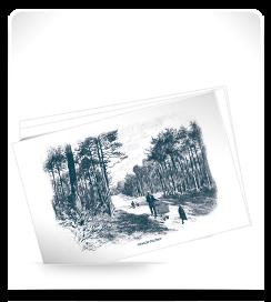 Carte postale Grande Surface