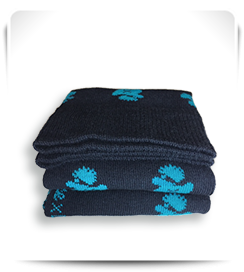 Laspid X Archiduchesse bleu et canard